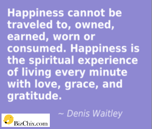 Denis Waitley quote