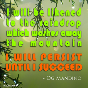"""I will be likened to the raindrop which washes away the mountain. I will persist until I succeed."" Og Mandino - BizChix.com"
