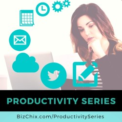 Productivity Series - BizChix.com
